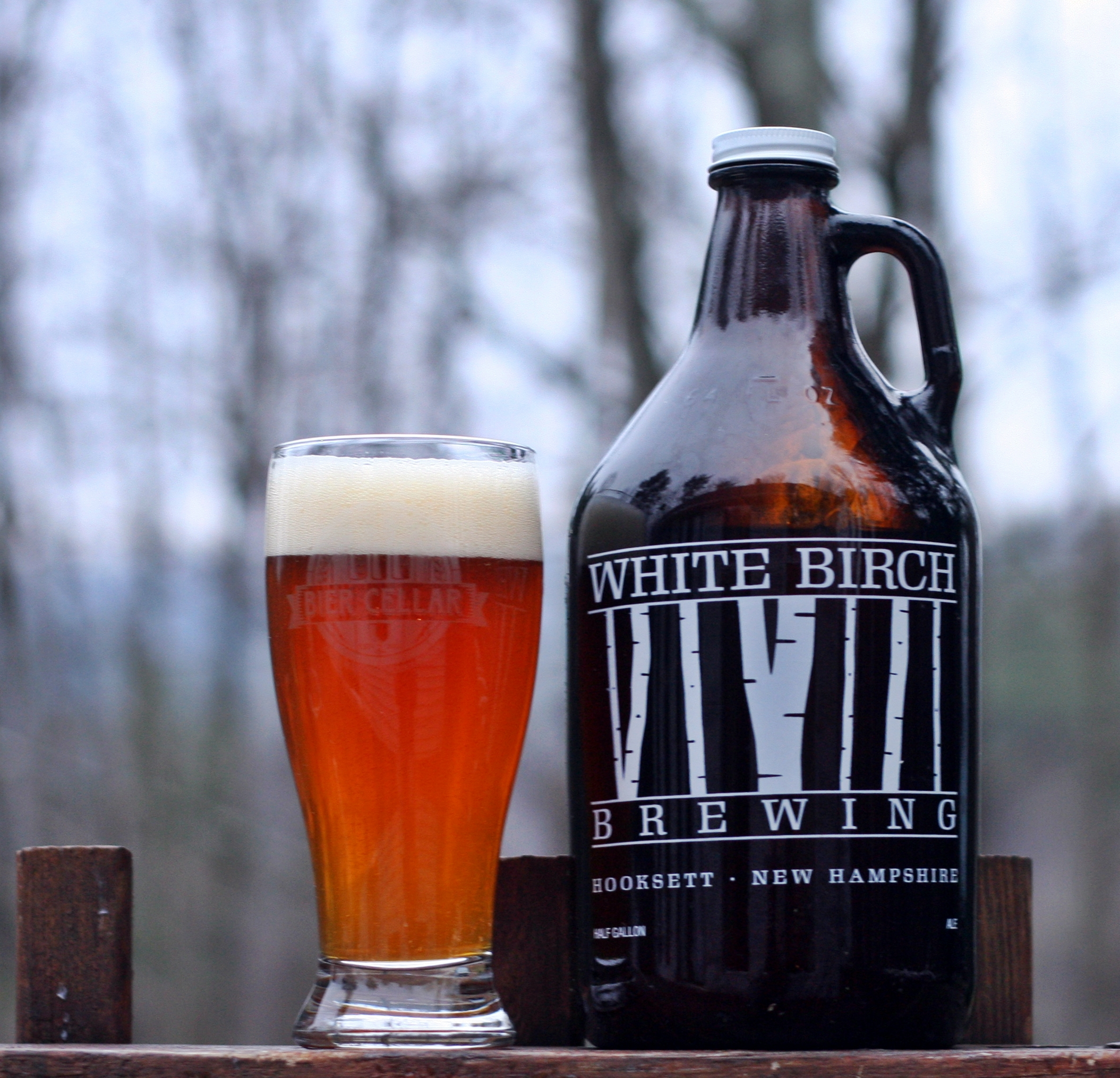 White Birch Hop Session Ale Review | Insurance Guy Beer Blog