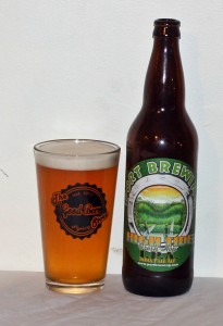 Port Brewing High Tide IPA