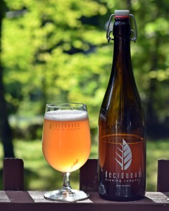 Deciduous Brewing Auroral
