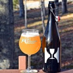 Hill Farmstead Motueka Pale Ale